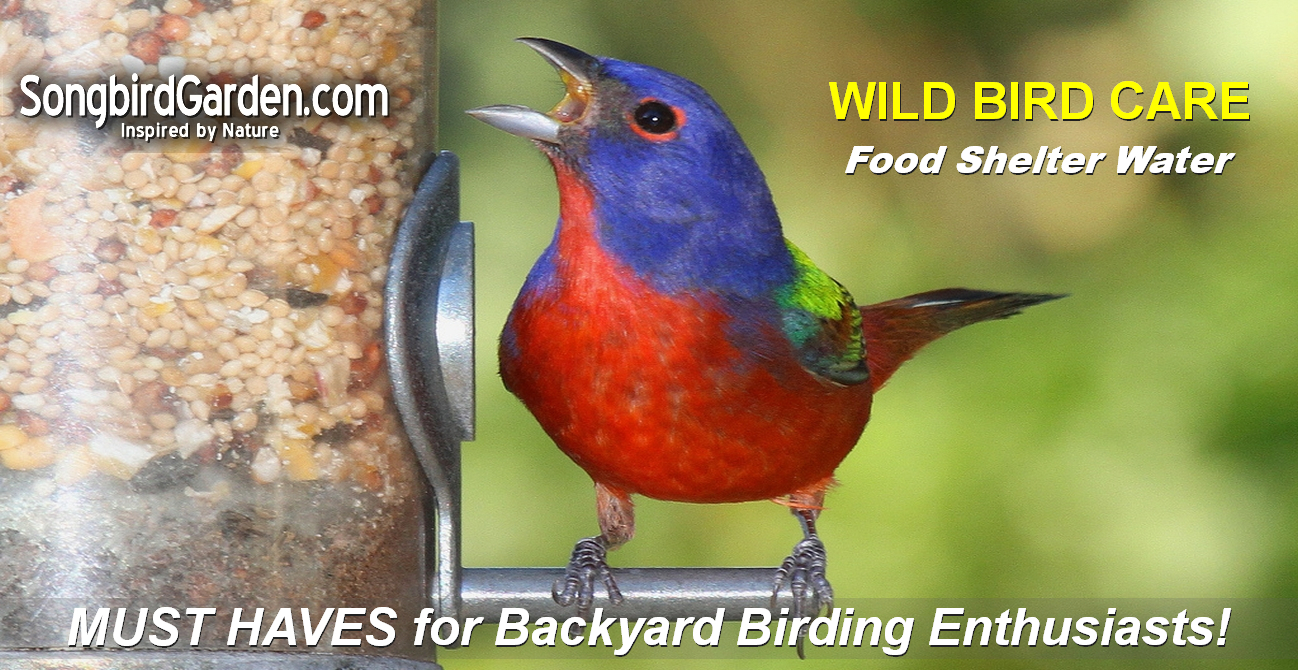 Wild Bird Care - Bird Feeders, Bird Houses, Bird Baths, Wild Bird Food