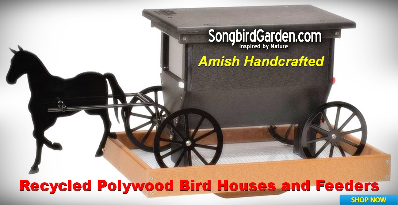 Amish Handcrafted Recycled Poly Bird Houses and Bird Feeders
