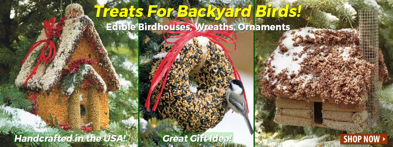 Edible Bird Seed Wreaths, Seeded Birdhouses, Bird Seed Ornaments