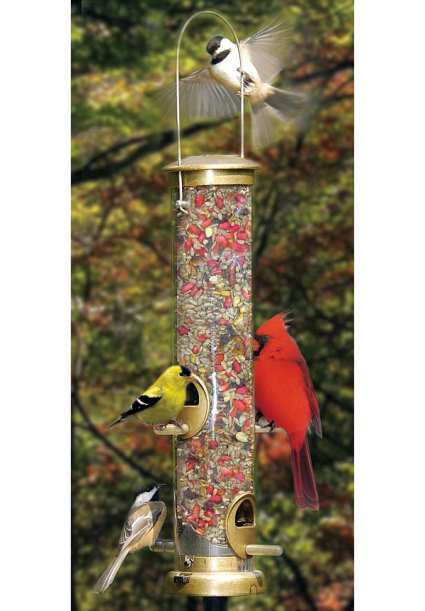 Peanut Bird Feeders For Attracting Woodpeckers Blue Jays