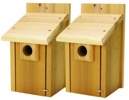 Barn swallow birdhouse plans Riversshed -