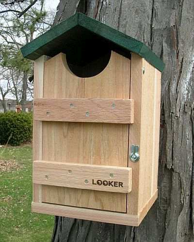 Woodpecker Houses Flicker Houses Nest Boxes For