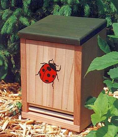 Ladybug Houses Homes For Ladybugs Ladybug Houses For