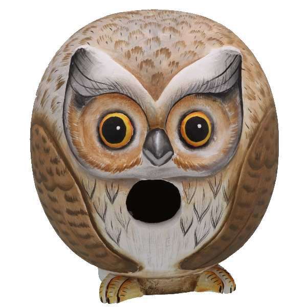 For The Birds Gord-O Owl Bird House