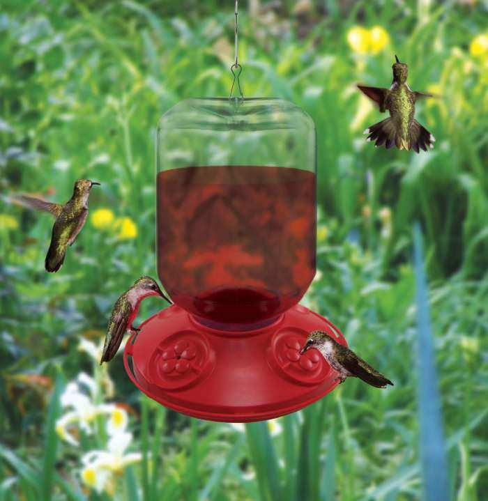 Dr. JB's Switchable 48oz Hummingbird Feeder