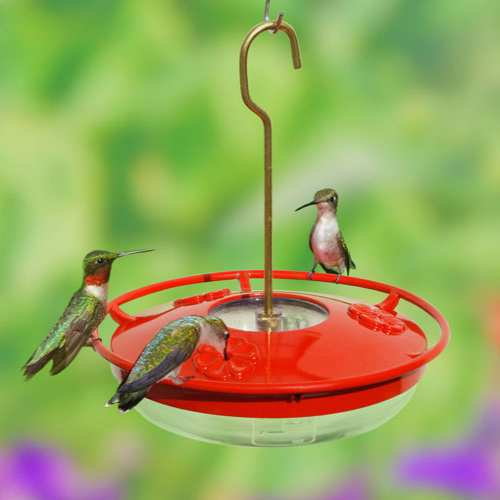 HummZinger HighView 8 oz Hummingbird Feeder