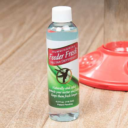 Hummingbird Feeder Fresh Nectar Defender 4 oz