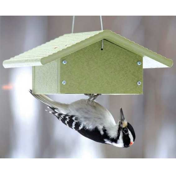 Green Solutions Recycled Upside Down Suet Feeder