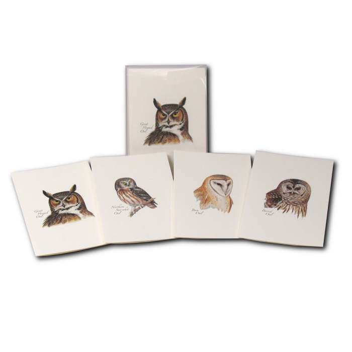 Boxed Notecard Assortment Peterson Owl Set of 8