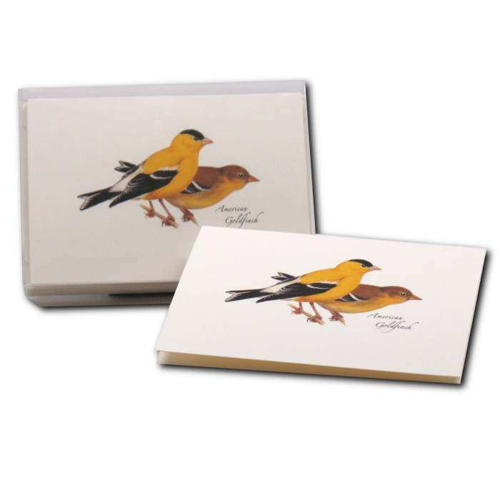 Boxed Notecard Assortment Goldfinch Set of 8