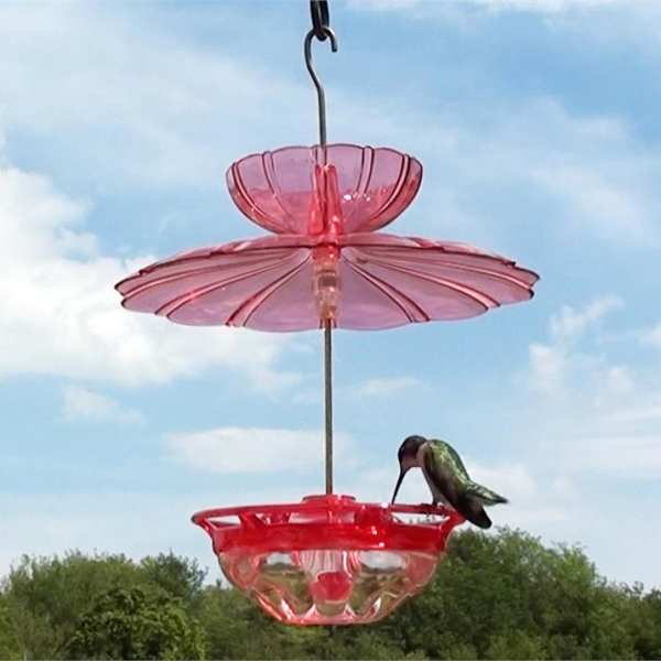 HummBlossom Hummer Feeder w/Accessory Kit