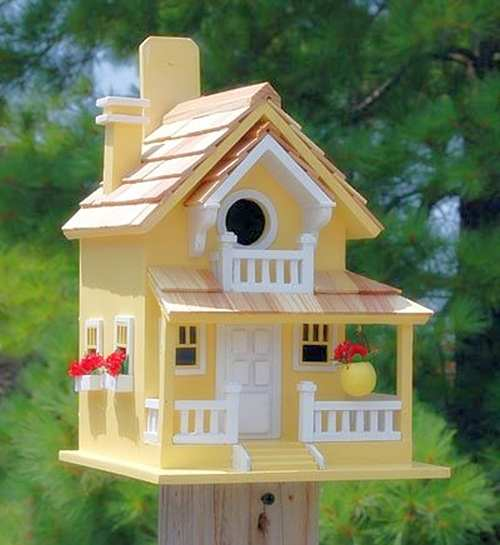 Backyard Bird Cottage Yellow