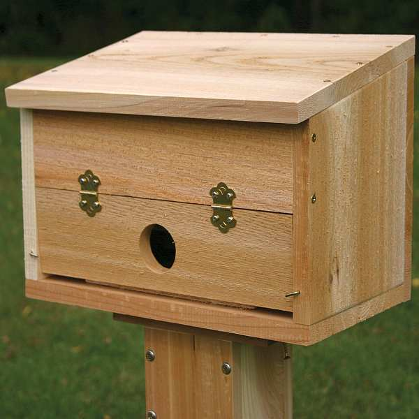 Cedar Select Winter Roosting Box