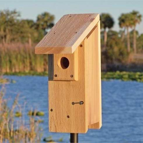Cedar Select Eastern Bluebird House