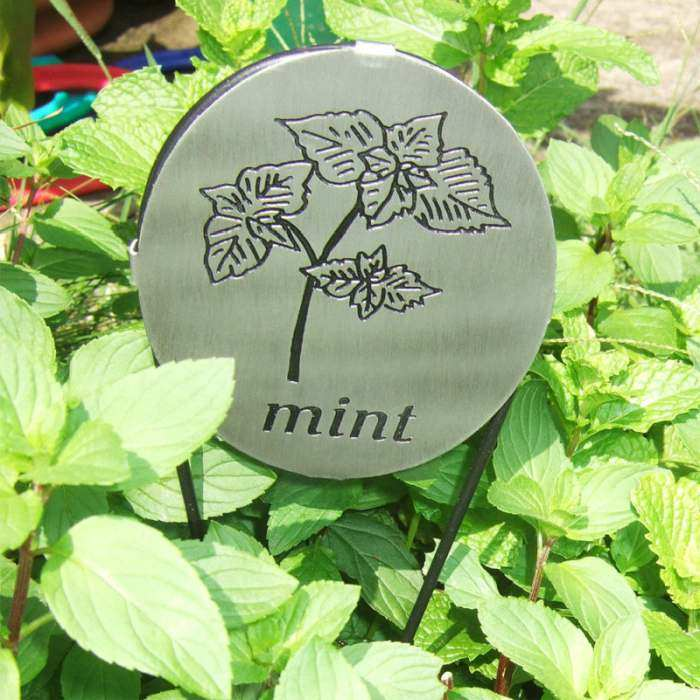 Achla Herb Markers Set of 11