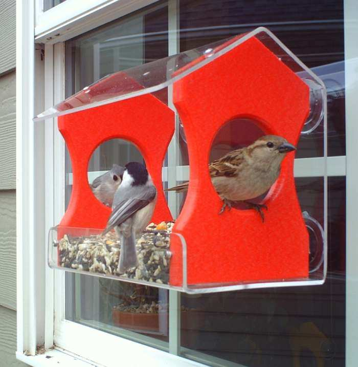 Songbird Recycled Poly Window Feeder Medium Red