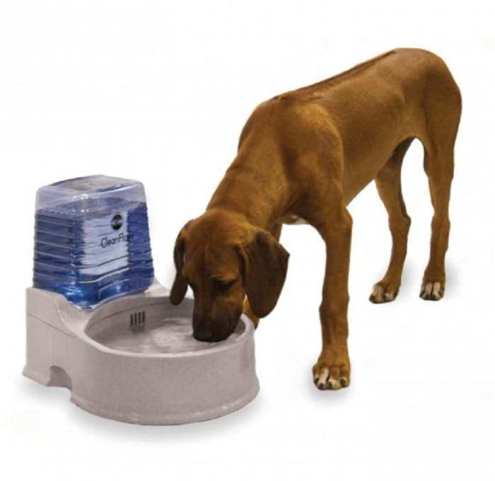 CleanFlow Water Filter Bowl for Dogs Large