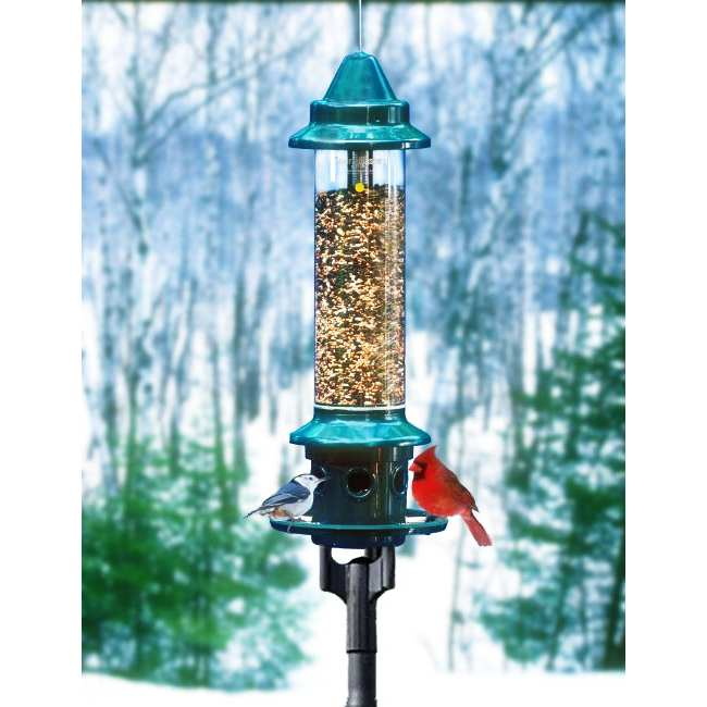 Squirrel Buster Plus Feeder w/Pole Accessory Kit