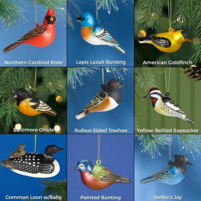 Blown Glass Bird Ornament Collection II Set of 9