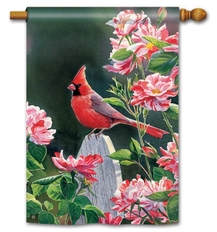 Breeze Art Cardinal w/Variegated Roses House Flag
