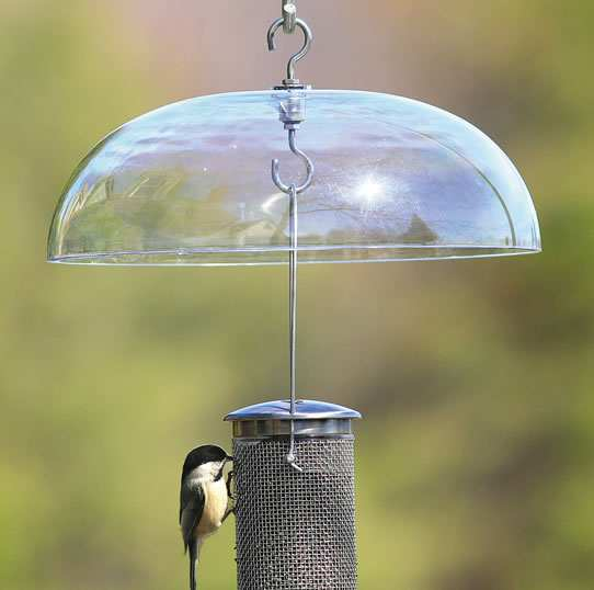 Aspects Bird Feeder Weather Dome