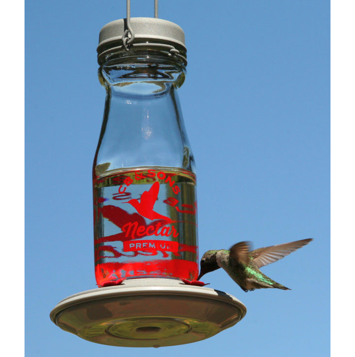 Jersey Hummingbird Feeder 18 oz.