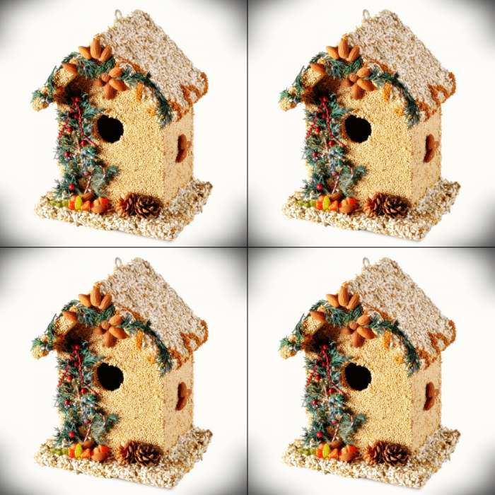 Juniper Bed & Breakfast Edible Bird House 4/Pack