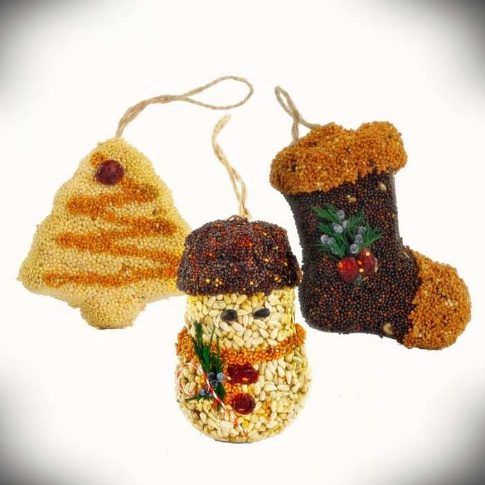 Christmas Shapes Bird Seed Ornament Gift Box