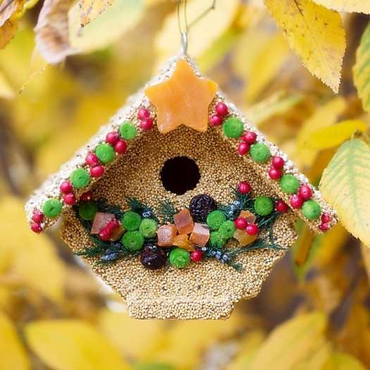 Fruit Wren Casita Edible Birdhouse