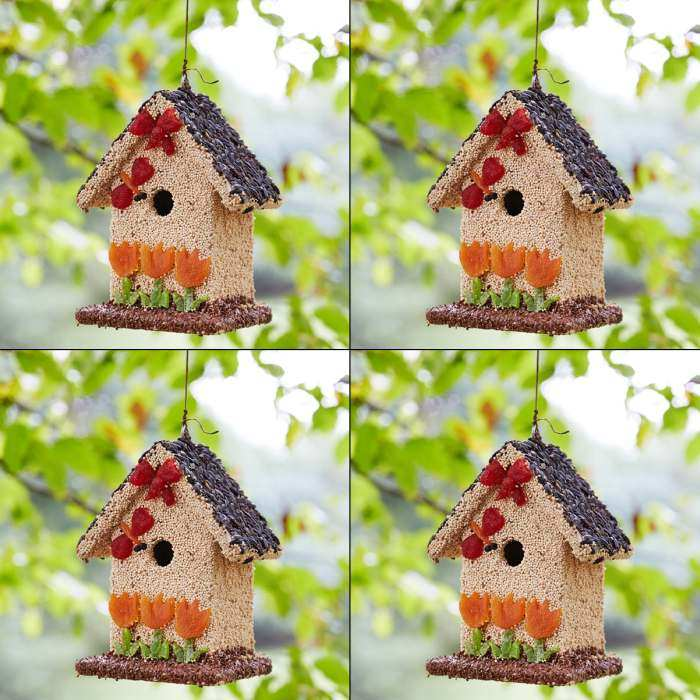 Spring Fruit Bed & Breakfast Edible Birdhouse 4/PK