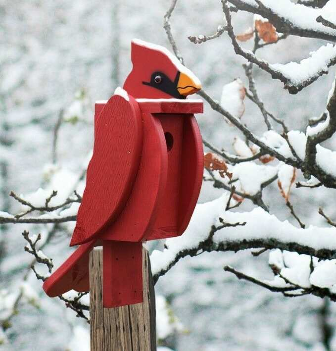 Amish Handcrafted Shaped Birdhouse Cardinal