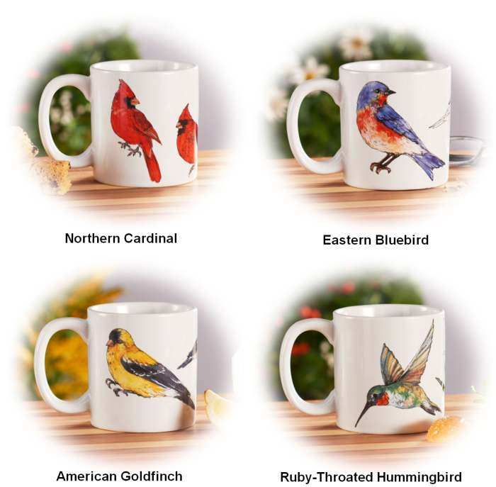 Field Guide Collection Ceramic Coffee Mug Set of 4