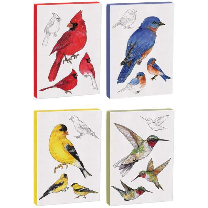 Field Guide 5x7 Canvas Bird Prints Set of 4