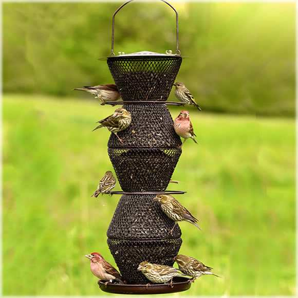 No/No 5-Tier Collapsible Bird Feeder Bronze