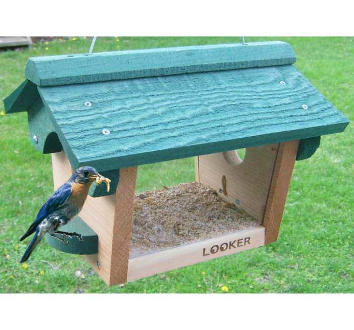 Bluebird/Chickadee Feeder