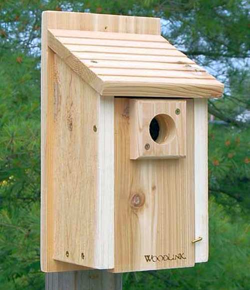 Woodlink Audubon Traditional Bluebird House