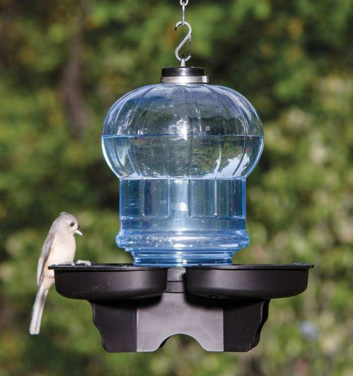 Bird Bath & Waterer Blue Globe