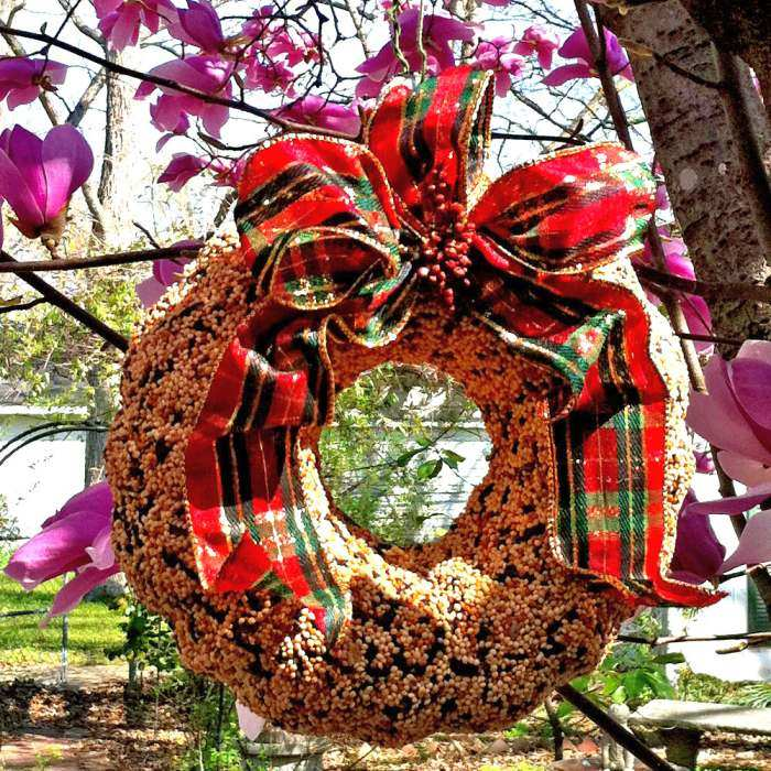 Songbird Holiday Edible Wreath