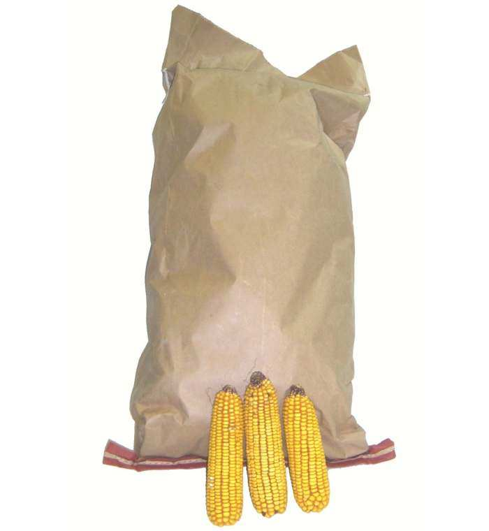 Songbird Ear Corn 25# Bag Value Pack