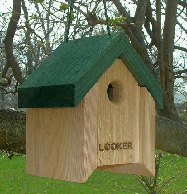 Lifting Roof Wren House Twin Pack