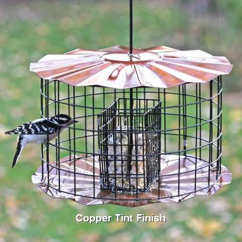 Caged Double Cake Suet Feeder