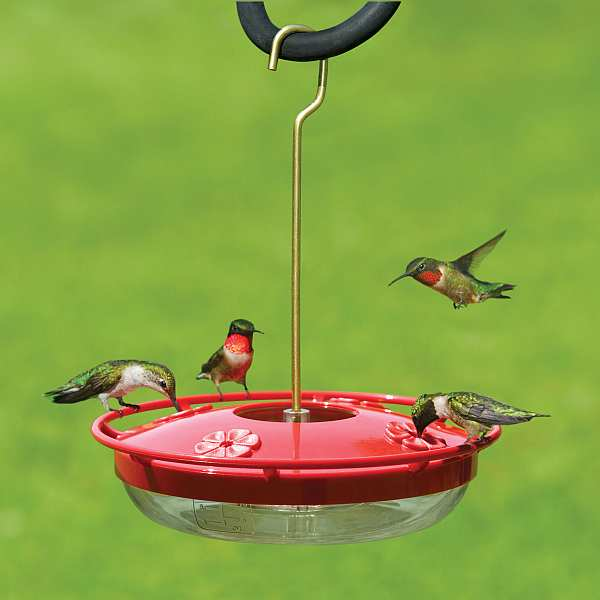 HummZinger HighView 12 oz Hummingbird Feeder