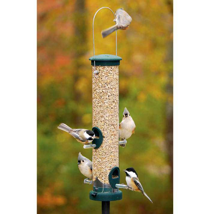 Aspects Quick Clean Spruce Seed Tube Feeder Medium
