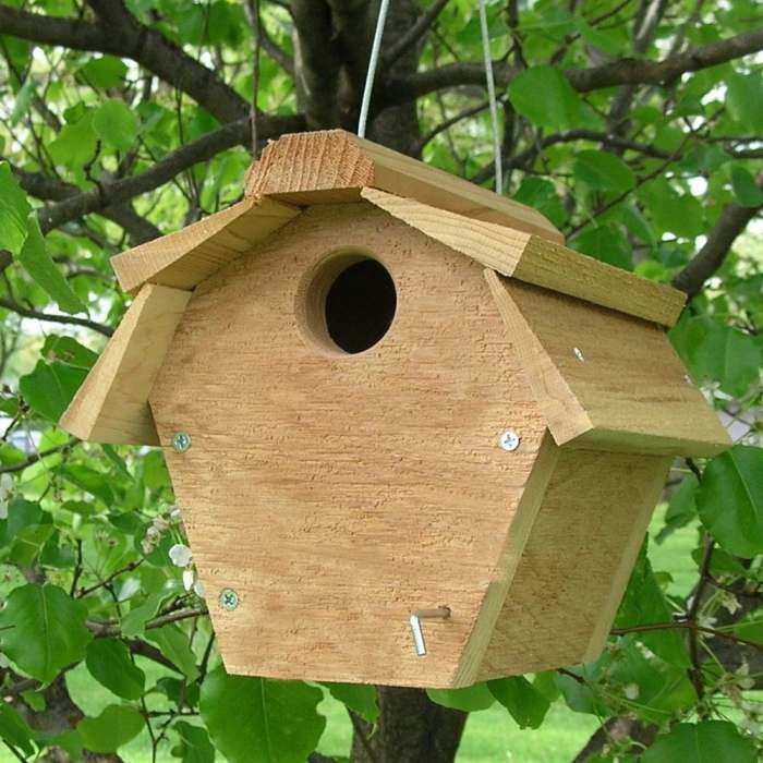 Carolina Wren Cedar Nest Box