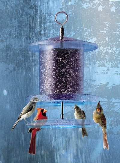 All Weather 4 Quart Weatherproof Bird Feeder