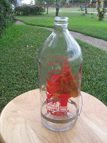 Best-1 Hummingbird Feeder Replacement Bottle 32oz