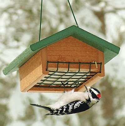 Second Nature Single Cake Upside Down Suet Feeder