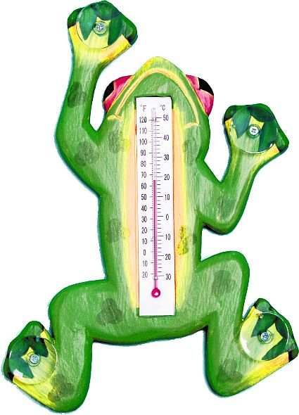 Window Thermometer Green Frog Small