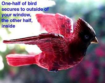 Cardinal Fly Through Window Magnet