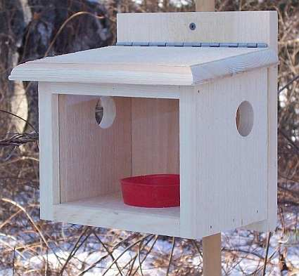 Conservation Deluxe Post Mount Bluebird Feeder